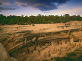 Ruins of Cliff Palace Built by Pueblo Indians  Mesa Verde National Park  Colorado  USA