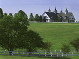 Elegant Horse Barn Atop Hill  Woodford County  Kentucky  USA