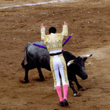 Bullfight or Fiesta Brava  San Luis Potosi  Mexico
