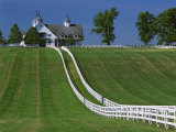 Double White Fence Flows from an Elegant Horse Barn  Woodford County  Kentucky  USA