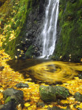Starvation Creek Falls Creates a Maple Leaf Whirlpool on Water