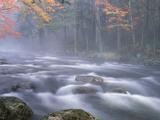 Big Moose River Rapids in Fall  Adirondacks  New York  USA