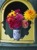 Dahlia Flowers in Vase  Ornate Window Frame  Bellingham  Washington  USA