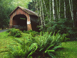 Yachats River Covered Bridge in Siuslaw National Forest  North Fork  Oregon  USA