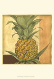 Golden Pineapple I