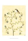 Berry Bird II