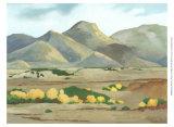 Western Vista V