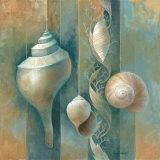 Ocean Treasures I