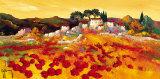 Provence Doree