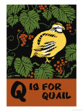 Q is for Quail