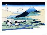 Cranes Nearby Mount Fuji