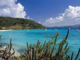Jost Van Dyke Island  British Virgin Islands  Caribbean  West Indies  Central America