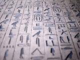 Hieroglyphics in the Interior of the Pyramid of Unas  Sakkara (Saqqarah)  Egypt  Africa