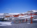 A Family Community  Argentine Esperanza Base  Antarctic Peninsula  Antarctica  Polar Regions