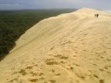 Dune Du Pilat  Gironde  Aquitaine  France  Europe