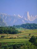 Naranjo De Bulnes (Peak)  Picos De Europa Mountains  Asturias  Spain  Europe
