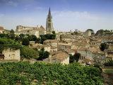 St Emilion  Gironde  Aquitaine  France  Europe