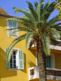 Yellow House and Palm Tree  Villefranche Sur Mer  Cote d'Azur  Provence  France  Europe