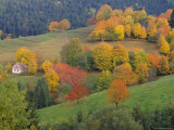 The Vosges  Alsace-Lorraine  France  Europe
