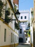 Quiet Street in Seville  Andalucia  Spain