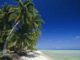 Beach  Rangiroa Atoll  Tuamotu Archipelago  French Polynesia  South Pacific Islands  Pacific