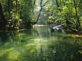 Longboats Moored in Creek Amid Rain Forest  Island of Borneo  Malaysia