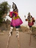Masked Ceremonial Dogon Dancers on Stilts Near Sangha  Mali  West Africa