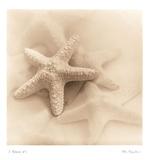 Il Oceano I Reproduction d'art par Alan Blaustein