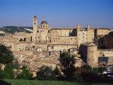 Urbino  Marche  Italy  Europe
