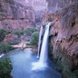 Havasu Falls  Grand Canyon  United States of America (USA)  North America
