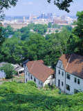 Houses Amid Trees and City Skyline in the Background  of Birmingham  Alabama  USA