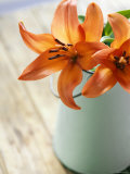 Orange Lilies in White Pail