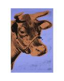 Cow, c.1971 (Purple and Orange) Reproduction d'art par Andy Warhol