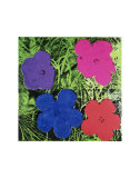 Flowers (Purple  Blue  Pink  Red)