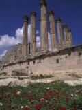 Columns in the Ancient Roman City in Jaresh  Jordan