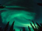 Aurora Borealis Swirling in the Night Sky  Alaska
