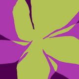 Flowers  c2007
