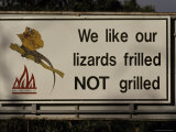 Bush Fire Conservation Road Sign Protects the Frilled Lizards Habitat  Australia