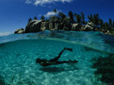 Diver Swims in the Beautiful Water Off the Isle de Coco in the Seychelles