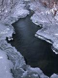 Rufous Creek Freeze Up  Alaska
