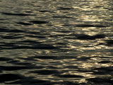 Sun Reflecting on the Surface of the Water
