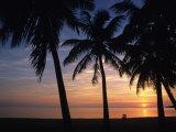 Sun Rise near Placencia  Belize