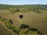 Napa Valley  USA: Hot Air Balloon Flying over Vineyards  California