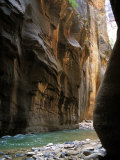 The Virgin River Flows Through Narrows Canyon in Zion National Park  Utah