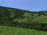The Rolling Green Hills of Sky Meadows State Park