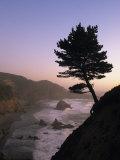 Scenic View of the Oregon Coast at Twilight