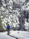 Woman Mountain Biking in the Snow