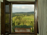 Window Looking Out Across Vineyards of the Chianti Region  Tuscany  Italy