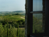 Vineyards of Chianti Viewed Through and Reflected Upon an Open Window  Tuscany  Italy