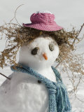 Snowman with a Carrot Nose  Fake Hair  Hat  and Scarf  California